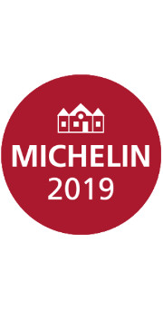 Michelin logo2019